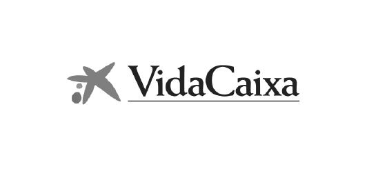 vidacaixa_dot_logo_web