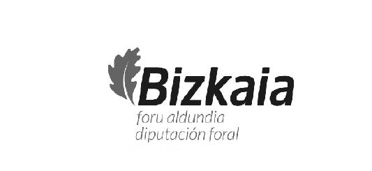 diputacion bizkaia_dot_logo_web